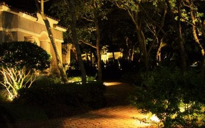 Landscape Lighting Ideas to Take Your Yard to The Next Level