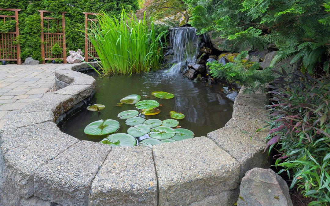 common landscaping mistakes